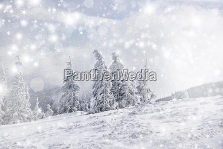 weihnachten hintergrund mit sternen und verschneiten