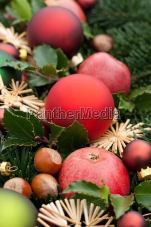 fir fir branch fir branches holly