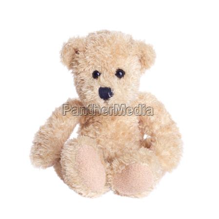 play teddy bear bears teddybear brown