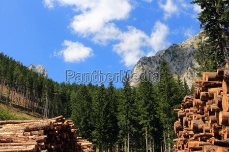 austria brennholz rustikal holzblock protokollieren struktuiert