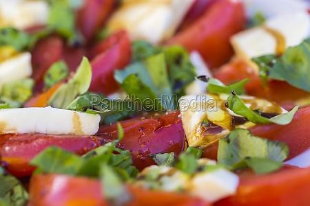 antipasti tomaten und mozzarella