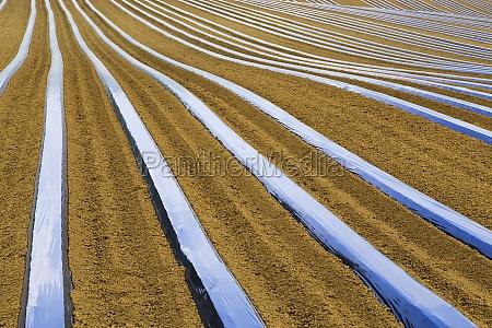 linien der landwirtschaft