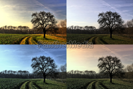 a winters day in four versions