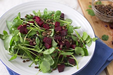 healty wurzel salat