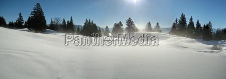 winter shine shines bright lucent light