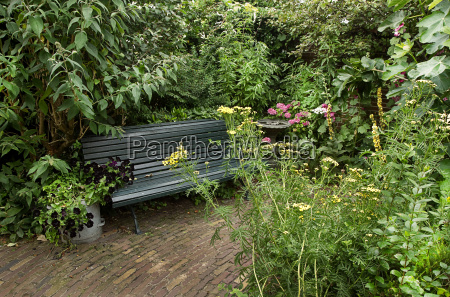 country style garden with bench and