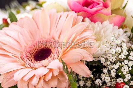 frische schoene schnittblumen strauss in rosa