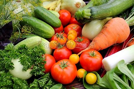 frisches gemuese tomaten gurken karotten zucchini