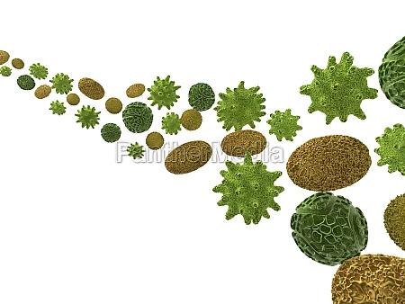 3d rendered illustration of some pollen