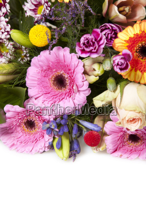 colorful floral greeting with copy space
