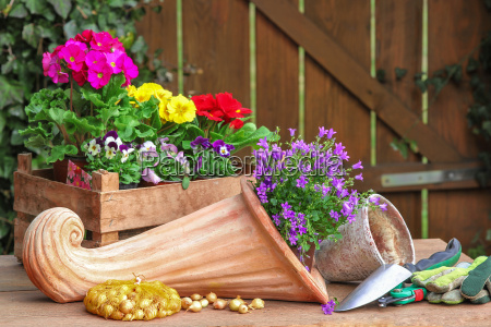 cornucopia flowers and garden tools
