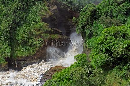 frothy murchison falls uganda