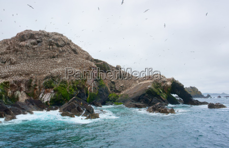 mountain top with bird sanctuary at