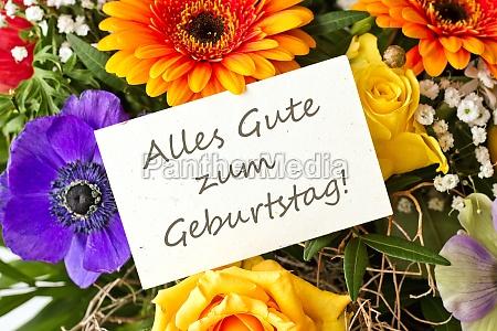 happy birthday congratulations wish birthday card
