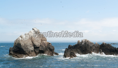 rock formation with some birds at