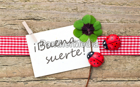 spanish text lettering four leaf clover