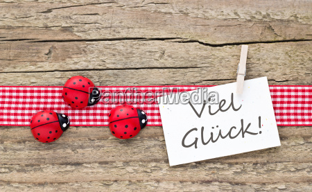 german text lettering clover ladybug ladybird