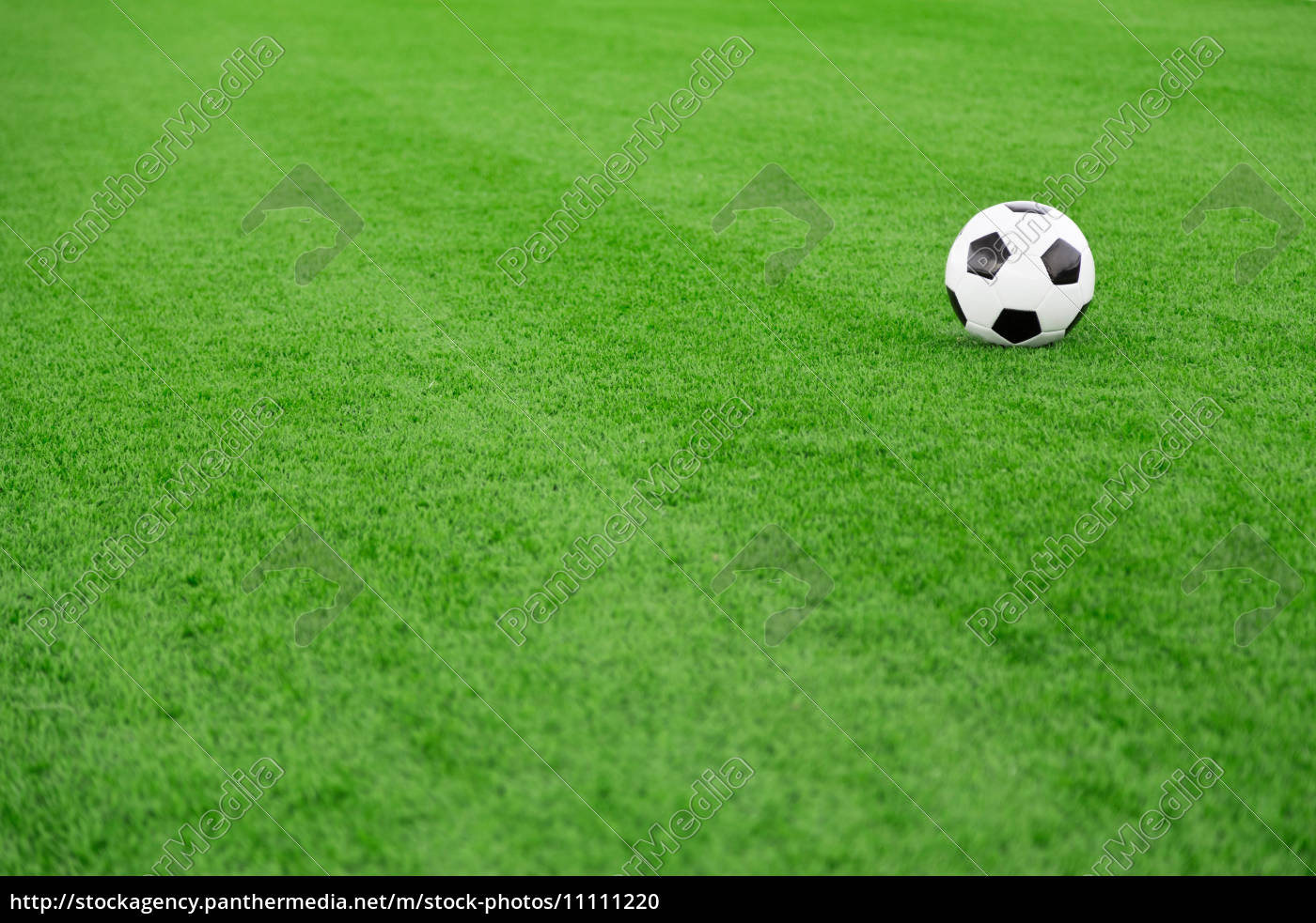 Lizenzfreies Foto 11111220 Traditionelle Fussball Auf Fussballfeld
