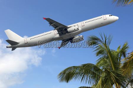 plane starts between palm trees on