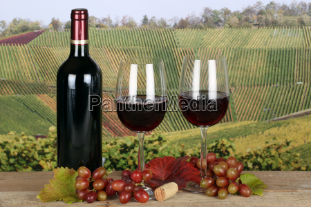 rotwein in weinflasche im weinberg im