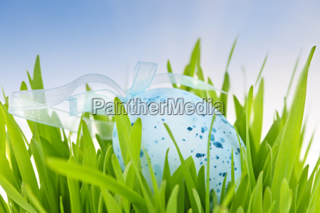 blaue ostereier im gruenen gras