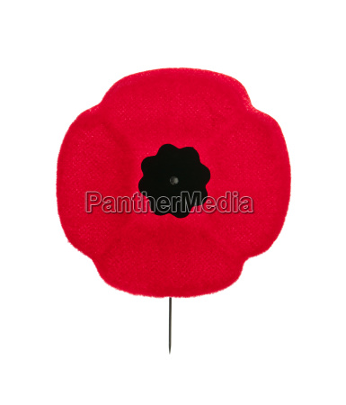 remembrance day mohn