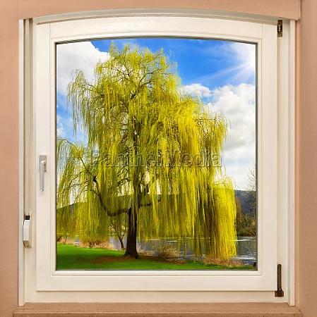 window framed idyll in spring
