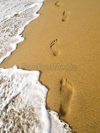 schoene landschaft am strand