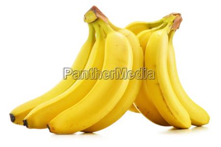 bananen getrennt auf weiss