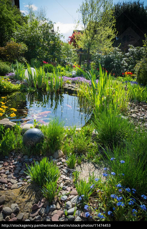 Lizenzfreies Bild 11474453 - Teich im Garten