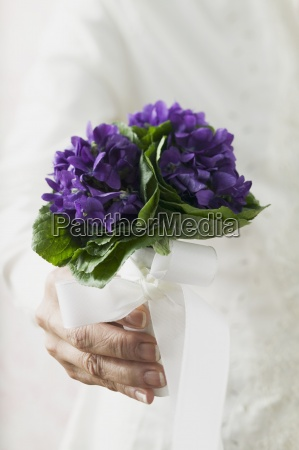 present single inside indoor photo flower