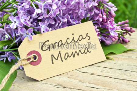 mothers day card mothers day mom