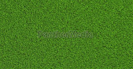 gras textur ebene senkrecht