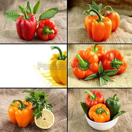 gesunde und bio lebensmittel konzept