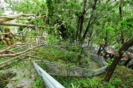 nach dem taifun beschaedigt