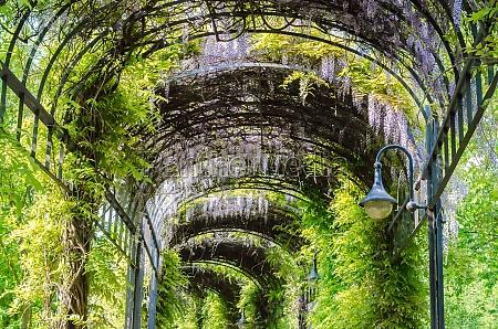 garten tunnel