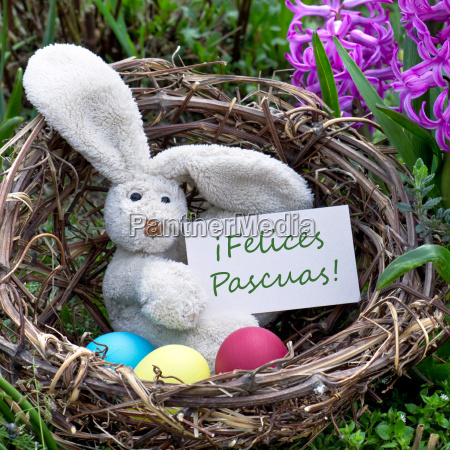 easter card happy easter greeting card