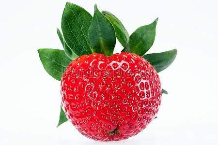 einzelne frucht der roten erdbeere isoliert