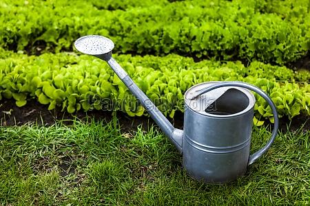 foto von metall giesskanne auf gras