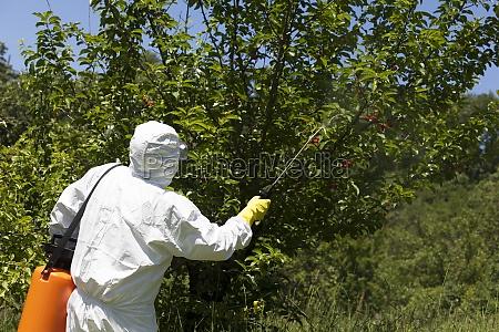 spruehen von pestiziden
