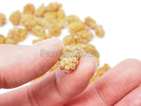 essen nahrungsmittel lebensmittel nahrung finger frucht