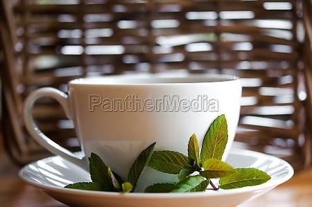 tasse tee