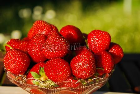 schale mit frischen erdbeeren auf gruenem