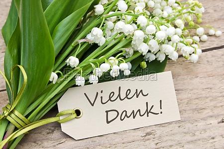 tafel blatt baumblatt blume pflanze gewaechs