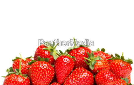 strawberries with copy space