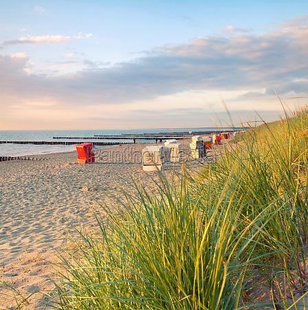 sillas de playa en la luz