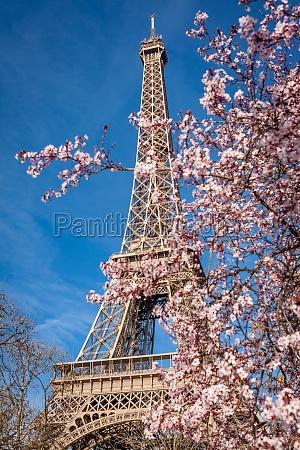 eiffel tower in paris landmark against