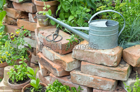 raised bed herbs garden pot flower