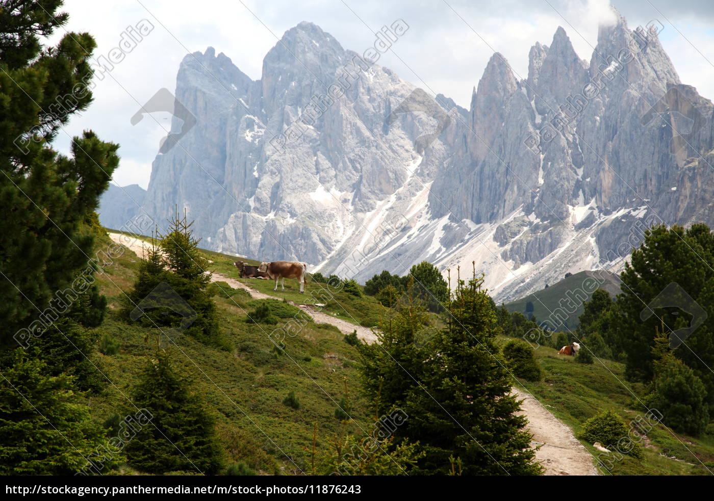 Natur, Reise, Urlaub, Panorama, Horizont, Wolken - 11876243