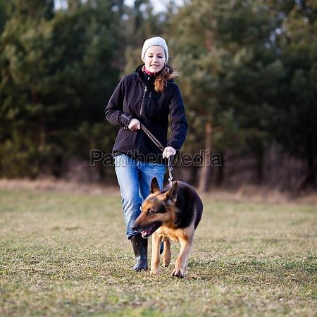 meister und ihr ungehorsamer deutscher schaeferhund